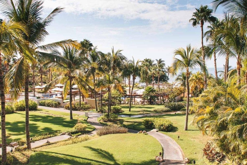 view of tropical landscaping and ocean at st regis punta mita