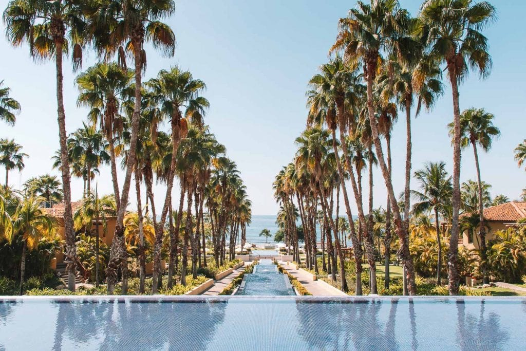 rows of palm trees and infinity pools at st regis punta mita