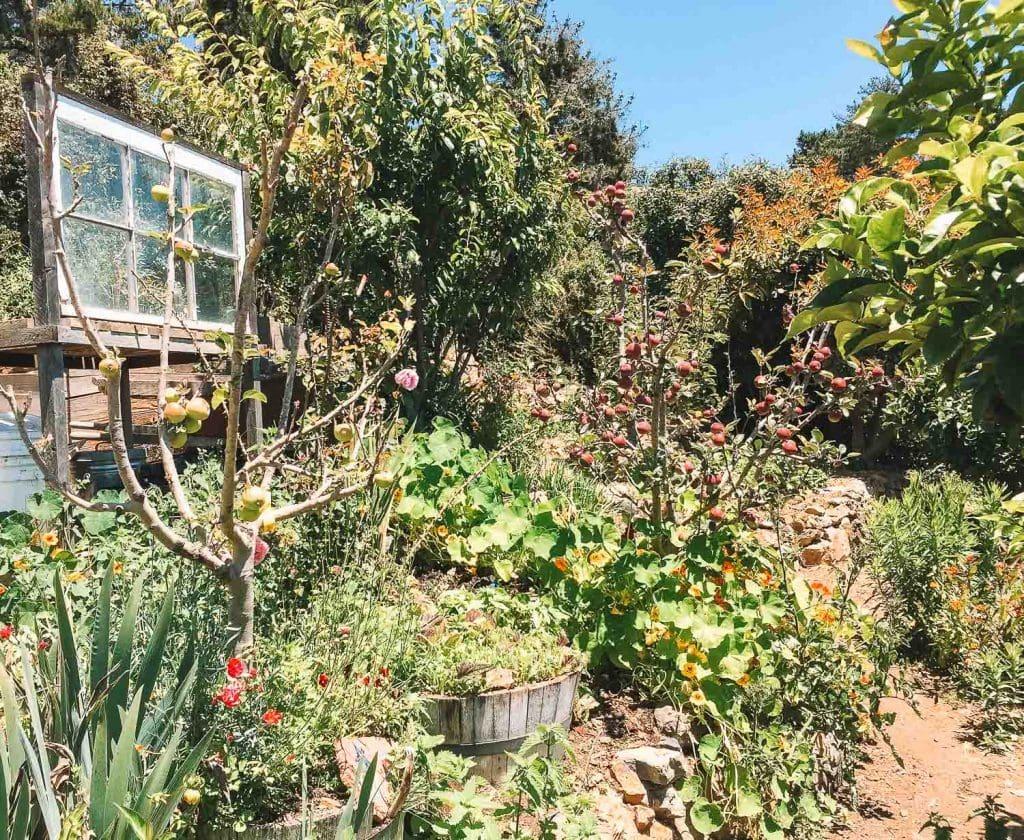 treebones resort organic garden